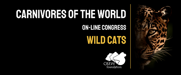 carnivores of the world on-line congress