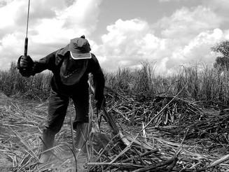 Por que entidades criticam demissão do chefe de combate a trabalho escravo