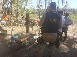 Quase 180 trabalhadores resgatados em indústrias de cera de carnaúba no Piauí