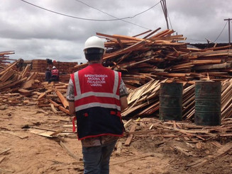 Peru conduz fiscalizações contra trabalho forçado com apoio do Brasil e da OIT