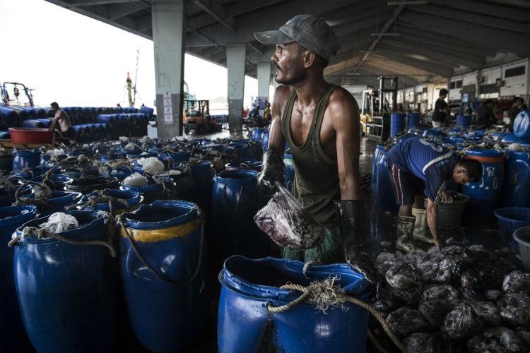 Foto tirada na Tailândia, onde o trabalho escravo tornou-se muito comum na indústria da pesca