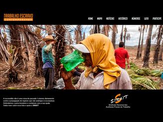 Sinait lança portal sobre trabalho escravo contemporâneo em audiência na CDH