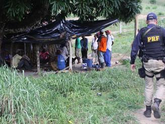 Dezenove pessoas mantidas em trabalho escravo são resgatadas de fazenda sem água e banheiro na BA