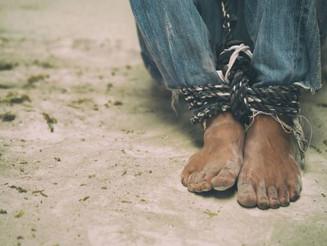 OIT: 613 pessoas foram resgatadas mais de uma vez da escravidão