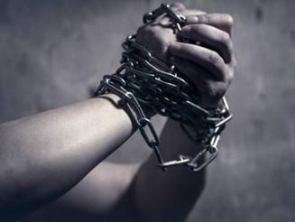 Startups criam ferramentas para denúncia de escravidão