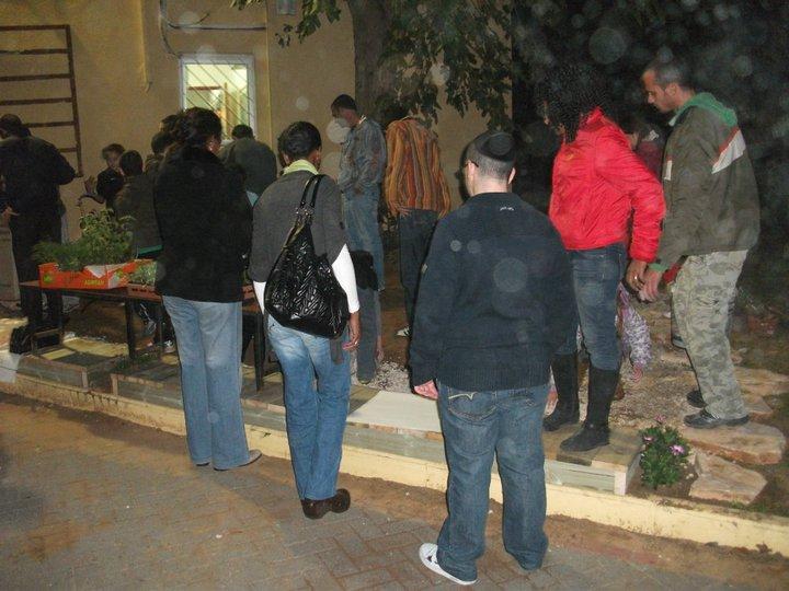 טו בשבט ינואר 2011 (7)