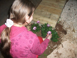 טו בשבט ינואר 2011 (9)