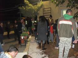 טו בשבט ינואר 2011 (8)