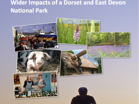 Economic Opportunities for Dorset and East Devon