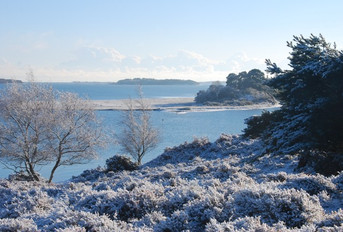Purbeck Arne Poole Harbour