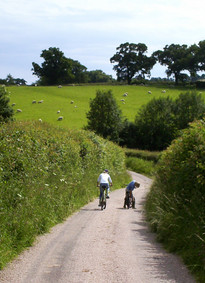 Quiet lanes in East Devon AONB Countryside