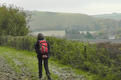 Rambling in the Countryside
