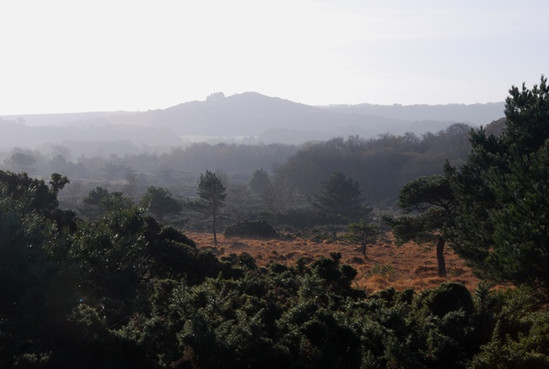 Purbeck Stoborough Heath Creech Hill