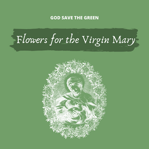 Catholic & Ecologist : Flowers for the Virgin Mary.
