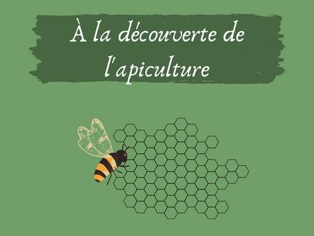 À la découverte de l'apiculture.