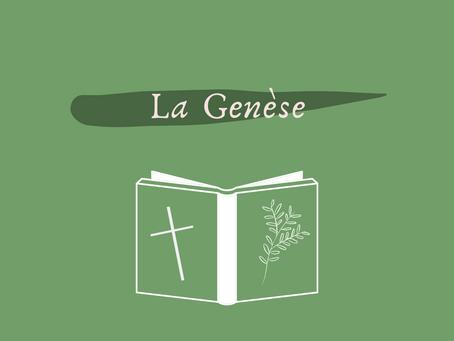 Catho & écolo: la Genèse.