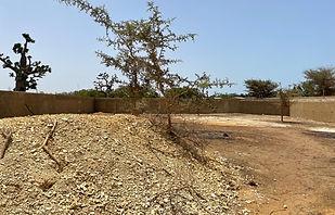 A vendre terrain clôturé 1 000 m2 à Nguering