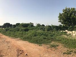 Terrain 1 500 m2 avec titre foncier Somone