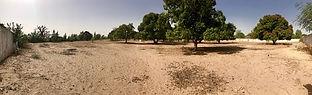 Grand Terrain clôturé à vendre à Warang