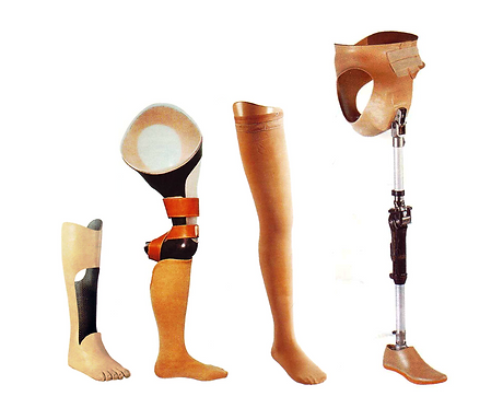 prosthesis12.png