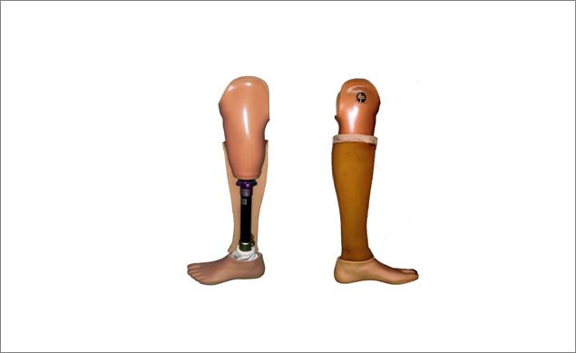 Below Knee - Endoskeletal