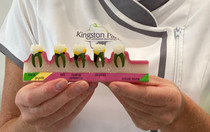 Your gums are the foundations to your teeth - keep them healthy.