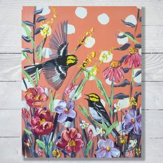 Golden Cheeked Warblers