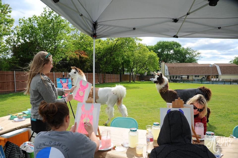 Llama Workshop