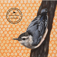 White-breasted Nuthatch  by Andrea Holmes