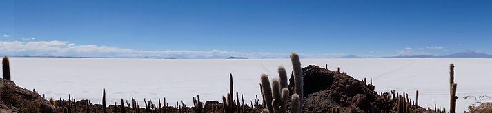 View from Isla Incahuasi