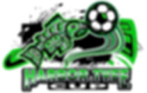 Tyee Cup 2019 Logo-=.jpg