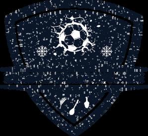 Zimska-malonogometna-liga-Slavonije-3.pn