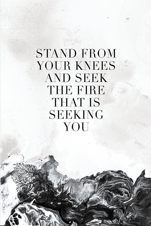 seek the fire