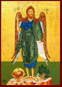 ΑΓΙΟΣ ΙΩΑΝΝΗΣ Ο ΠΡΟΔΡΟΜΟΣ, ΠΟΥΛΙ ΤΗΣ ΕΡΗΜΟΥ (2)