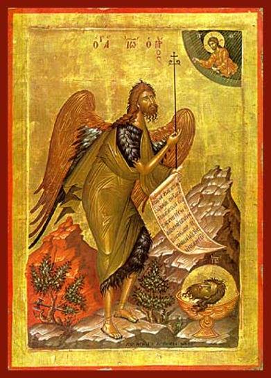 ΑΓΙΟΣ ΙΩΑΝΝΗΣ Ο ΠΡΟΔΡΟΜΟΣ, ΠΟΥΛΙ ΤΗΣ ΕΡΗΜΟΥ (3)