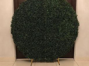 hedgebackdrop.jpg