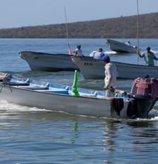 Conapesca reconoce el cooperativismo pesquero este 4 de julio