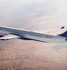 Delta ya no acepta animales de apoyo emocional en sus vuelos por política de DOT