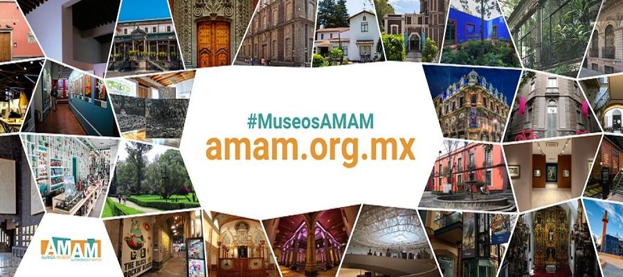 La Alianza de Museos Autónomos y Mixtos estrena su Sitio Web