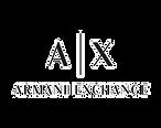 Logo_AX_edited.png