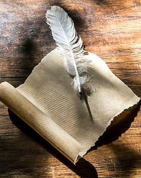 Feather bird and parchment on the table.