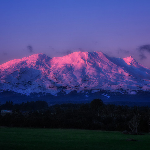 NZ_3065