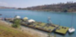 Tbilisi Sea Club - facebook page.jpg
