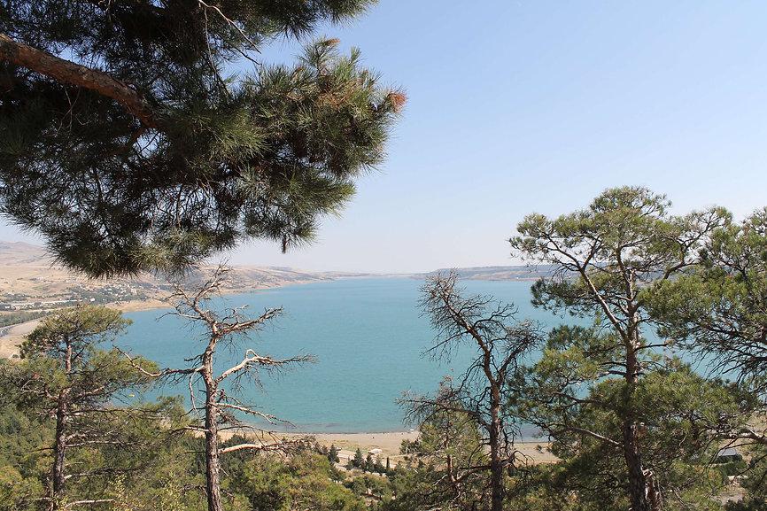 tbilisi sea - dodago ge website.jpg