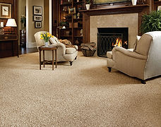 World of Floors Carpet Best Price