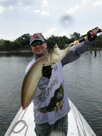 Pescaria Manaus 2016