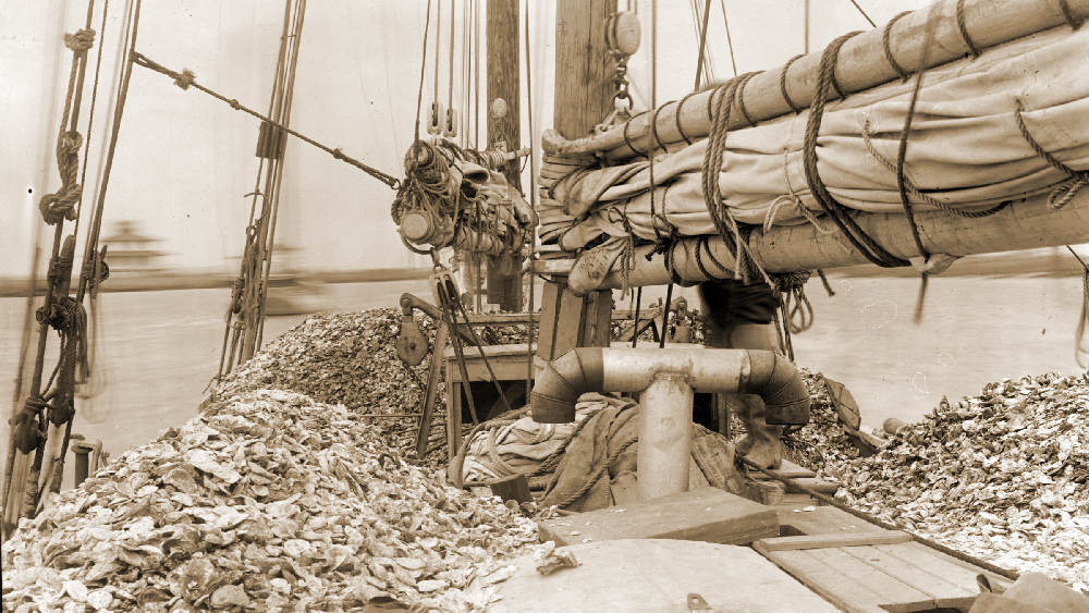 1380-006_#154_LOW RES Oyster Vessel, Dec
