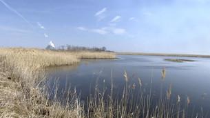 Blackbird: Delaware's Undiscovered Treasure