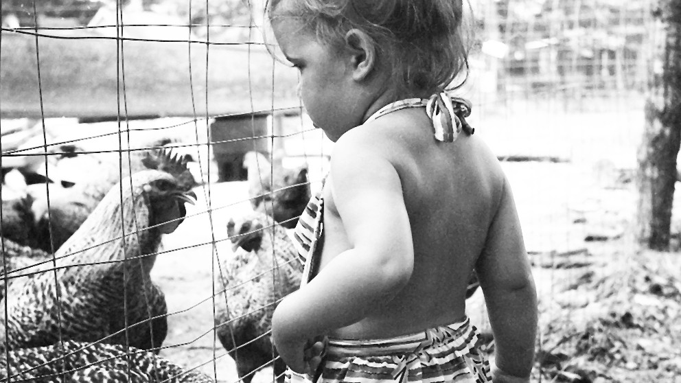 Child and chickens CROPPED FOR WEB.jpg