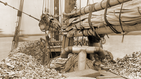 White Gold: Delaware's Oystering History